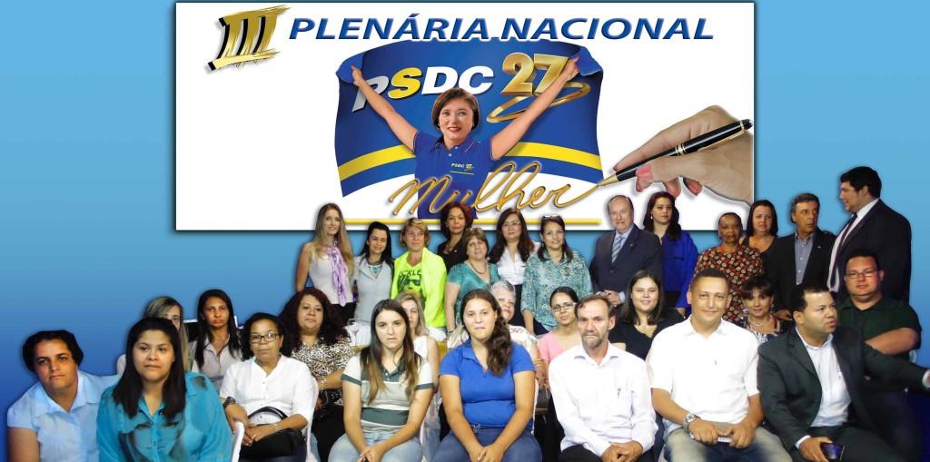 plenario mulher1